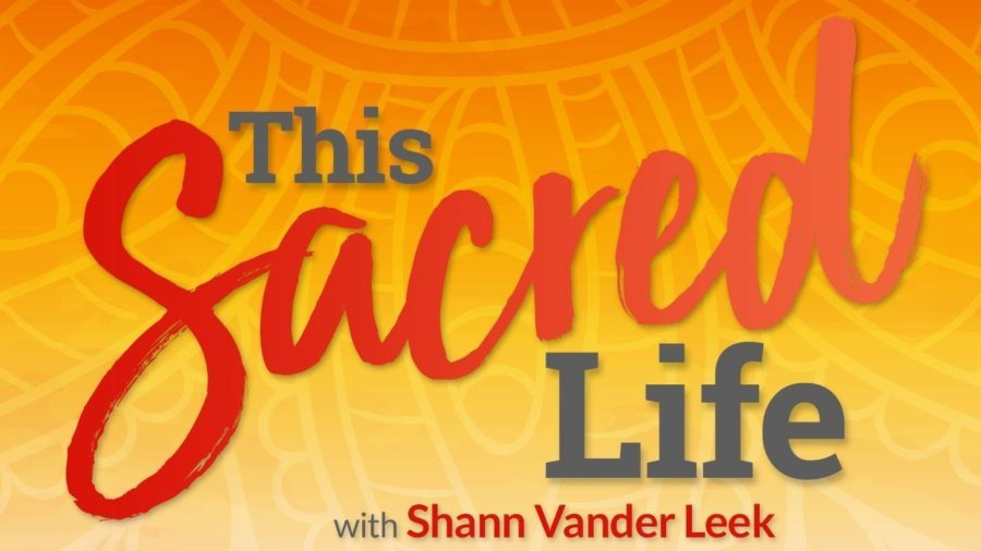 This Sacred Life – Joy Spotting Meditation